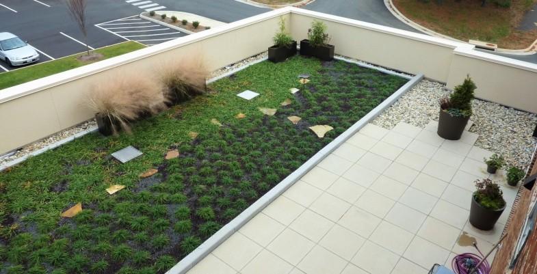 vegetative roof