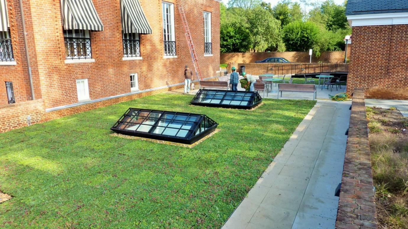 Vegetative Roof Garrett Hall University Of Virginia
